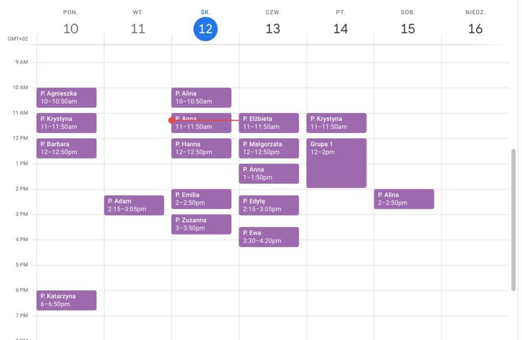 Kalendarz w Google Cal po synchronizacji z DobrymGabinetem